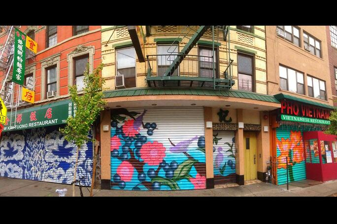 graffiti_shutters_gates_nyc.jpg