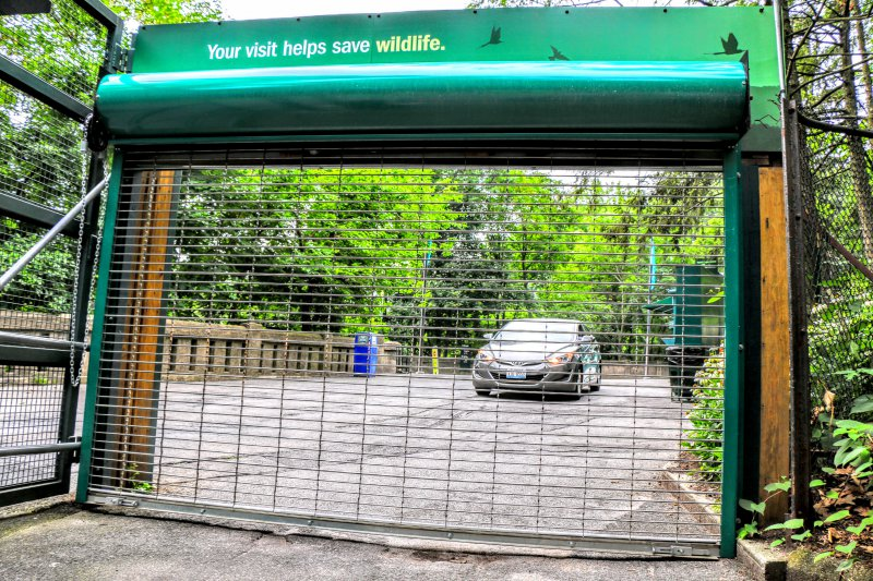 public-security-gate-at-bronx-zoo.jpg